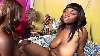amateur-huge-saggy-black-breasts-perky-boobs-gif